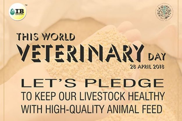 10 PRODUCTIVE WAYS TO CELEBRATE THE WORLD VETERINARY DAY 2018