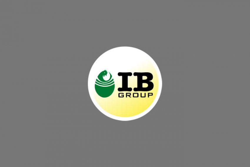 IB group to investment