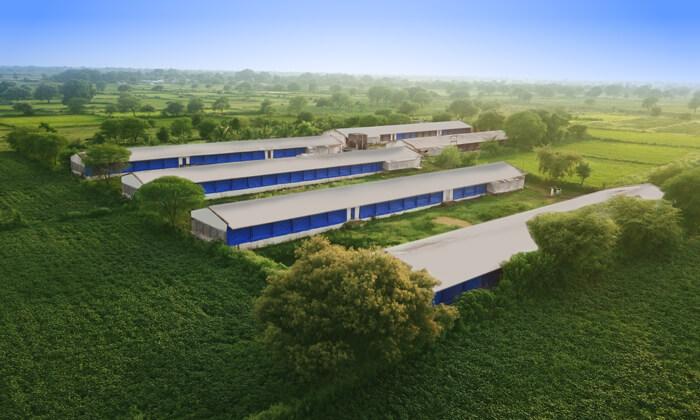 ECH-Poultry-farms