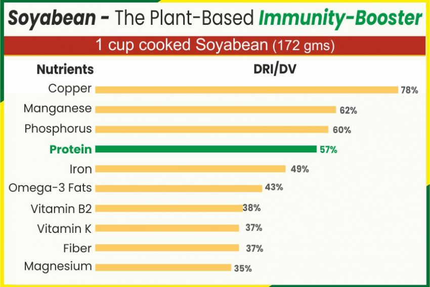 Soyabean- The Plant-Based Immunity-Booster
